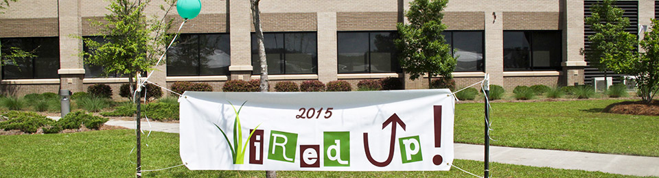 Wired-Up-Spring-2015-feature